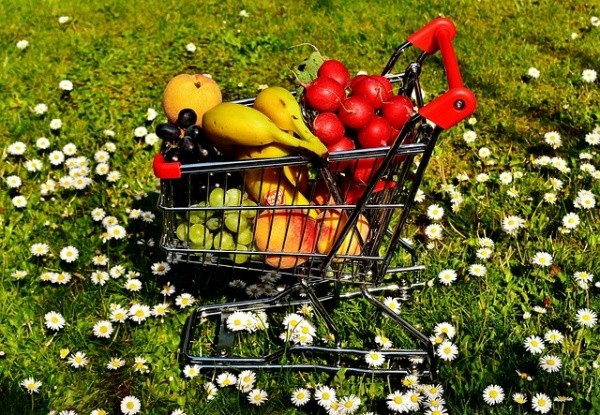 5 Ways to Reshape Your Shopping Cart to Lose Weight